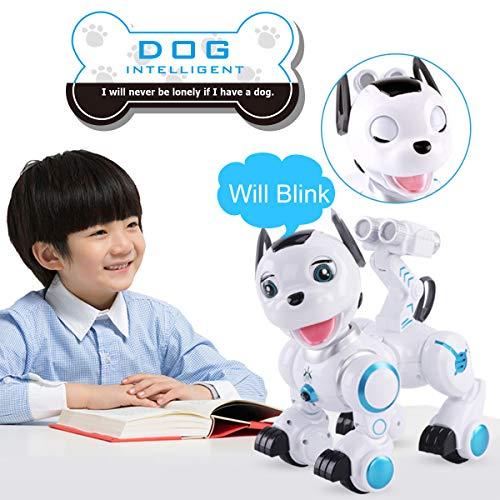 Fisca RC Robotic Dog