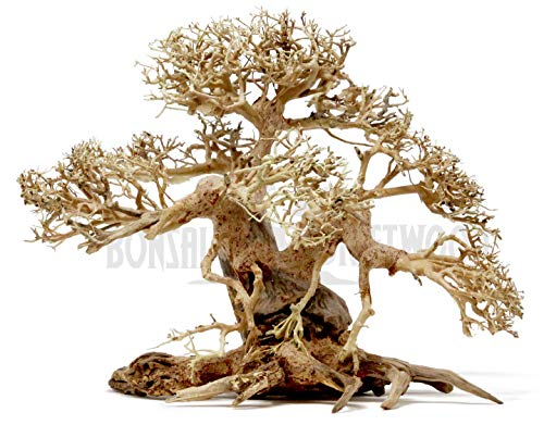 Bonsai Driftwood Aquarium Tree ABB (10 Inch Height x 14 Inch Length) Natural, Handcrafted Fish Tank Decoration | Helps Balance Water pH Levels, Stabilizes Environments | Easy to Install