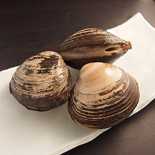 築地魚群 ほっき貝(うばがい)1kg(北海道産)