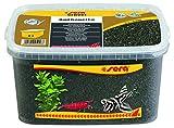 sera Gravel Anthracite 1-3 mm 6000 ml - Grava Natural Color Antracita (Ø 1-3 mm) para Todos los acuarios de Agua Dulce y Salada