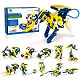 CIRO Stem Project Toys for Kids,11 in 1 Solar Robot Science Experiment Kit for Kids Ages 8-12, 231 Pieces DIY Learning Education Building Set