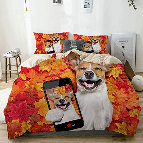 Yoyon Beige Duvet Cover,Jack Russell Dog Lying on The Ground Full of Fall Autumn Leaves Lying on The Back Torso,3 Pieces Quality Printed Microfiber Bedding Set,Modern Design