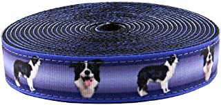 Country Brook Design - 1 Inch Border Collie Ribbon on Black Nylon Webbing