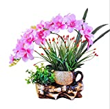 LZL Flores Artificiales de cerámica Creativa florero Phalaenopsis Orquídea Mariposa Conjunto de Flores de la falsificación del Ministerio del Interior de Escritorio Adornos (Color : Pink)