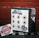 Bulldog Targets Doghouse Xp DHXP-P Archery Target PLUS