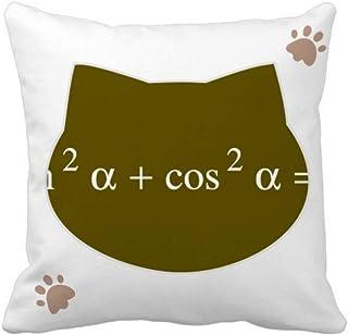 OFFbb-USA Fórmula matemática expresa cuadrado computacional gato manta almohada cubierta cuadrada