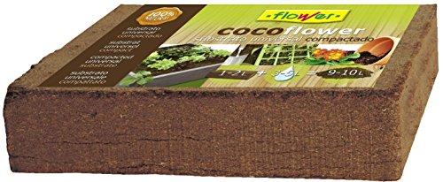 Flower 80070 80070 Coco, 9 l, No Aplica, 10.5x21x5.5 cm