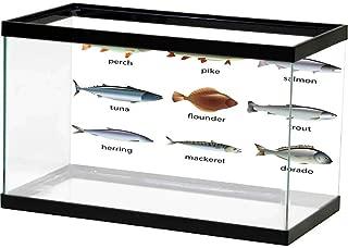 homecoco HD Aquarium Background Fish,Cartoon Character Happy Goldfish Smiling and Waving on White Background Illustration,Orange White Undersea World
