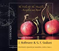 Violin & the Mandolin: Accomplices & Rivals