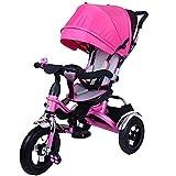 HYLX Triciclo Infantil,4 en 1 Bebe Evolutivo Trike Bike Bebé Plegable Pedal Bicicleta Niños Capota Extraíble Barra Telescópica Control Parental Dirección 6 Meses a 5 Años Máx 30 kg, Pink