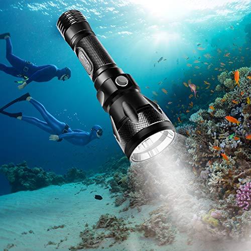 2 Dive Light Underwater 200 Lumens Diving Waterproof Flashlight Scuba Torch 50ft