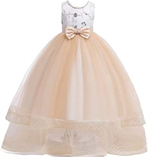 Kids Dresses for Girls Dresses Children Flower Party Pageant Special Occasion Dress Formal