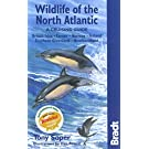 Wildlife of the North Atlantic: A Cruising Guide [Lingua Inglese]