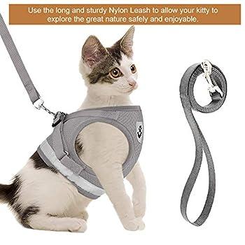 Toulifly Harnais pour chat avec laisse réglable pour petit chat et chien, Escape Proof Cat Harnais avec laisse, S
