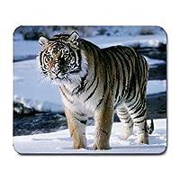 Tiger MousepadマウスパッドファッションGreat Gift Idea 2