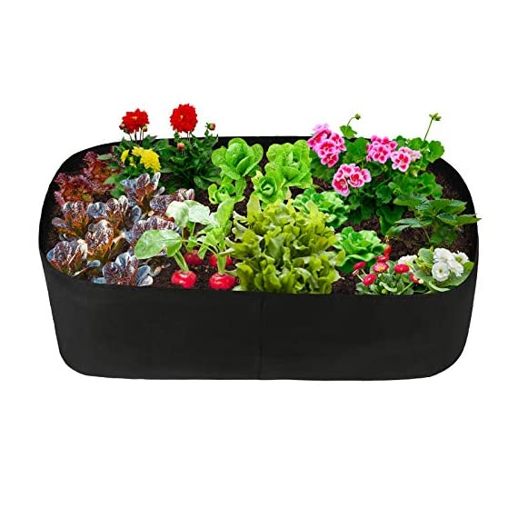 pannow Fabric Raised Planting Bed, Garden Grow Bags Herb Flower Vegetable Plants Bed Rectangle Planter for Plants… 1 ★Space-saving Gardening - Just enjoy the fun of growing your own organic vegetables and fruits; Our planting container is perfect for plants, flowers and fresh herbs, vegetables, fruits etc. ★Premium Material - Made of a proprietary fabric material, a highly durable, UV resistant, non-woven fabric that provides exceptional air flow throughout the soil and root systems and allows excess moisture to easily drain away ★Considerate Design - Plants will grow above the natural ground level with our fabric raised garden bed, which makes tending your garden much easier as you can weed, prune, water and harvest your crop with less stooping and bending; Ideal for anyone with back or joint problems