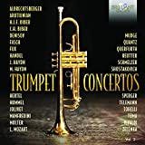 Sinfonia, G.16: I. Allegro