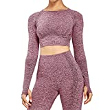 Aoxjox Women's Vital Seamless Workout Long Sleeve Crop Top Gym Sport Shirts (Wine Red Marl, Large)