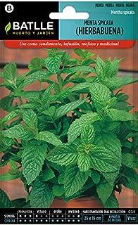 comprar comparacion Semillas Aromáticas - Menta Spicata (Hierbabuena) - Batlle
