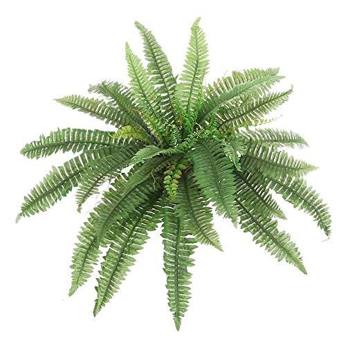 Pflanzen Kölle Boston Farn, 48 x 85 cm, grün, dekorativ, mit Topf