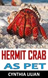 HERMIT CRABS AS PET: Discover the complete guides on everything you need to know about hermit crab and taking them as your pet