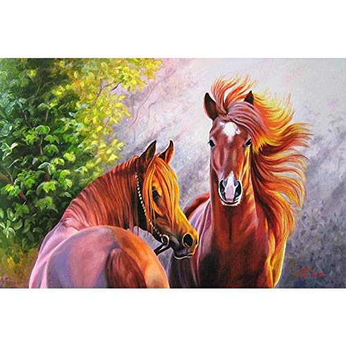 DIOPN 5D DIY Diamond Painting Wooncultuur DIY diamant borduurwerk Mooie paard kruissteek set abstract olieverfschilderij hars (ronde diamant 30 * 40) 40 * 50