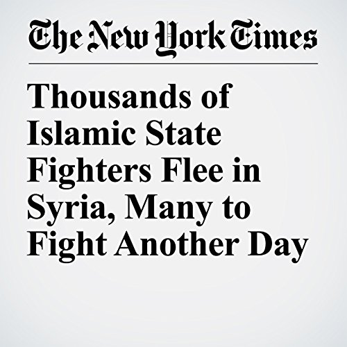 Thousands of Islamic State Fighters Flee in Syria, Many to Fight Another Day copertina