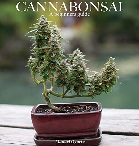 Cannabonsai: : A Beginners Guide