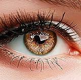 ELFENWALD farbige Kontaktlinsen, 3-Monatslinsen, besonders natürlicher Look, maximaler Tragekomfort, SUPREME Serie, ohne Stärke, 1 Paar weiche Farblinsen ohne Zusatzbehälter (Haselnuss) -