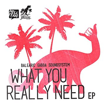 What You Really Need EP