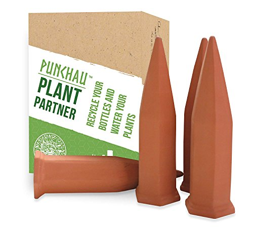 Terracotta Plant Waterer - Perfect for Vacation Plant Watering