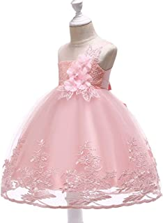 Birthday Party Gown Girls Embroidered Flower Long Dress (Color : Pink, Size : 120cm)
