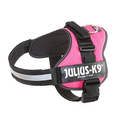 Julius K9 Powerharness, Tamaño 2, Colore rosa oscuro