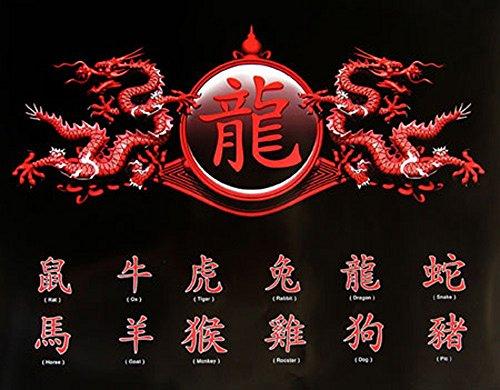empireposter – Chinese schrijf- Zodiac, Dragon – afmetingen (cm), ca. 50 x 40 - mini-posters, NIEUW -