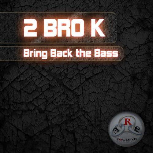 2 BRO K