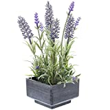 SIDCO Deko Lavendel Topf Kunstpflanze künstliche Blume Pflanze Zimmerpflanze Lavender