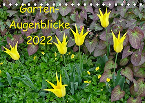 Garten-Augenblicke (Tischkalender 2022 DIN A5 quer)