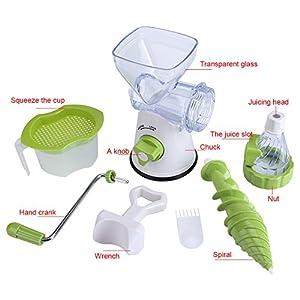 Manual Hand Crank Juicer,Single Auger Health Juicer Fruit&Vegetable Juice Extractor Fruit Squeezer Manual Wheatgrass… |