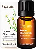 Gya Labs Roman Chamomile Essential Oil - Mind Relaxer for Stress Free Days & Healthy Skin (10ml) - 100% Pure Therapeutic Grade Aromatherapy Chamomile Oil Essential Oils for Diffuser & Topical Use