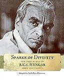 Sparks of Divinity: The Teachings of B. K. S. Iyengar meditation chair Dec, 2020