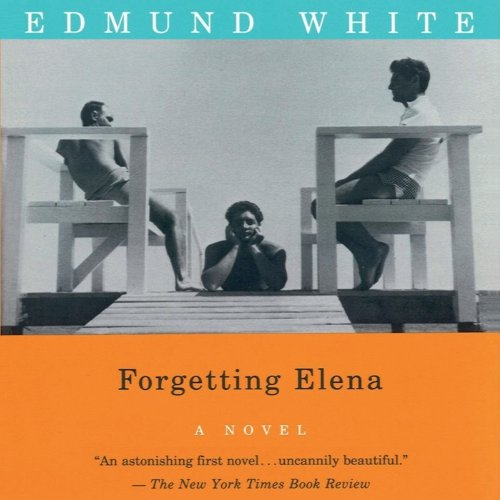 Couverture de Forgetting Elena