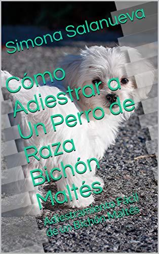 Cómo Adiestrar a Un Perro de Raza Bichón Maltés : Adiestramiento Fácil de un Bichón Maltés