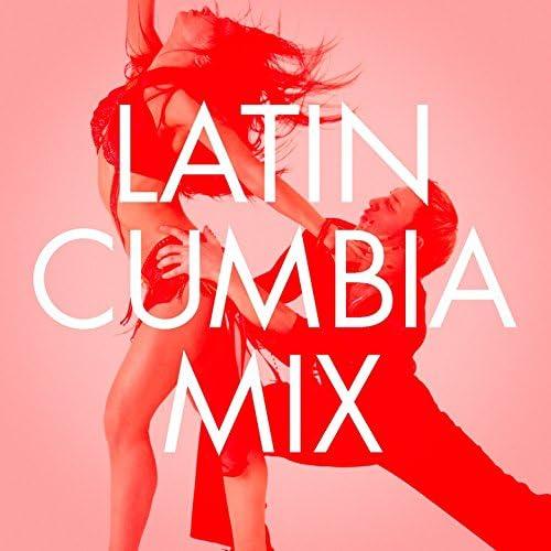 The Latin Party Allstars, Musica Latina