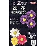【種子】 アスター×小菊 2種アソートパック サカタのタネ