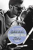 Dangerous Rush. Gefährliche Liebe: Die Rush-Trilogie 2 - Roman (German Edition)