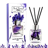 Best Diffuser Sticks - Seed Spring Reed Diffuser Set Lavender Aromatherapy Oil Review