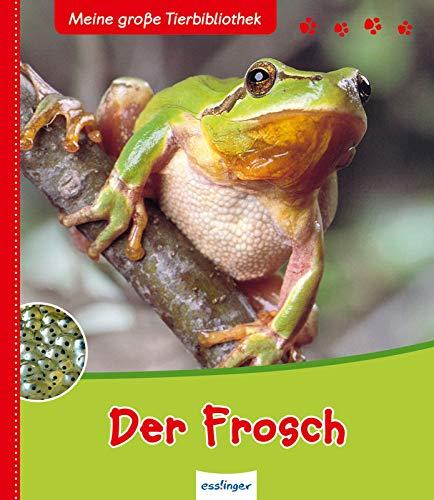 Der Frosch (Meine große Tierbibliothek)