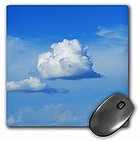 3dRose LLC 8 x 8 x 0.25インチ マウスパッド 両面 (mp_33116_1)