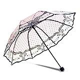 WerFamily Protable Beautiful Romantic Rainy Rain Custom Foldable Raining Clear Transparent Umbrella