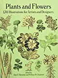 Plants and Flowers: 1761 Illustrations for Artists and Designers (Dover Pictorial Archives) (Dover Pictorial Archive Series) - Bessette;Chapman
